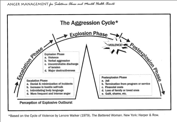 The Aggression Cycle